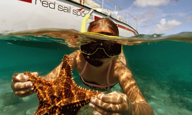 Sailing and Snorkeling Tour