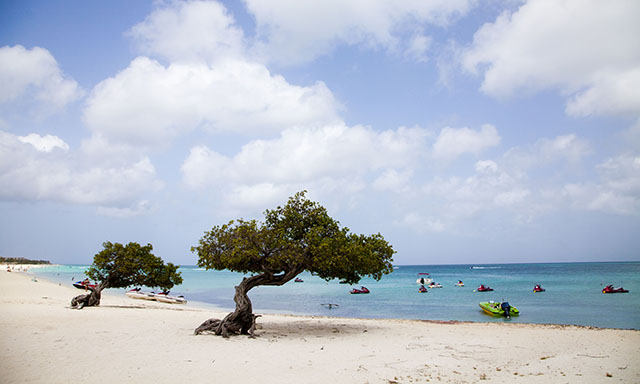 Aruba Island Sightseeing and Beach Adventure