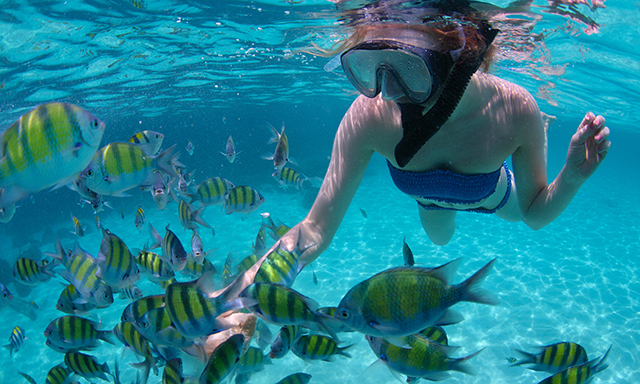 West Coast Cruise and Snorkel