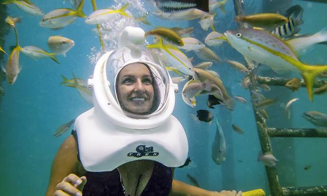 De Palm Island Helmet Dive