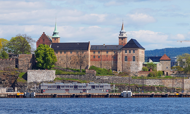 Scenic Oslo and Train Station Transfer