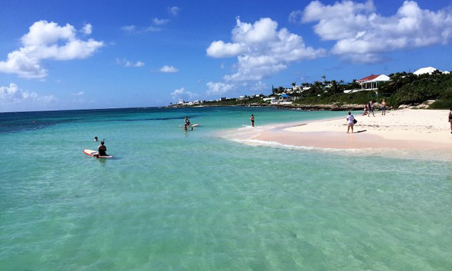 Anguilla Dolphin Encounter and Beach