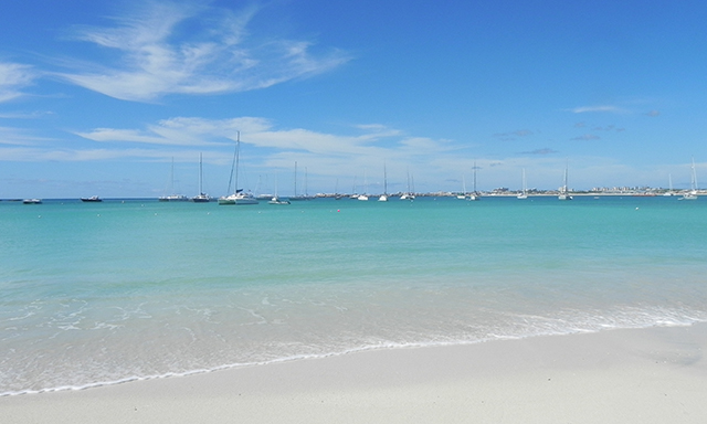 A St. Maarten Beach Rendezvous