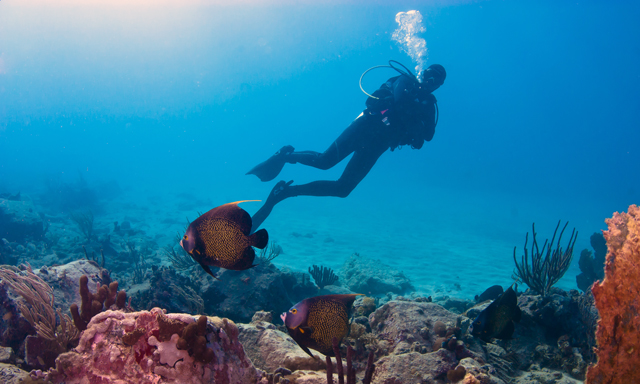 Scuba Diving for Beginners in St. Maarten