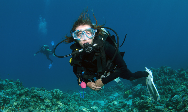 Certified Scuba Dive Without Equipment