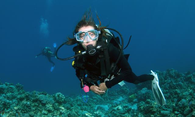 St. Maarten Scuba Dive Without Equipment