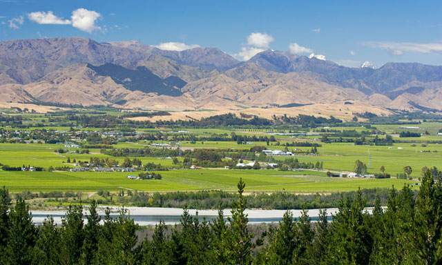 A Taste of Marlborough