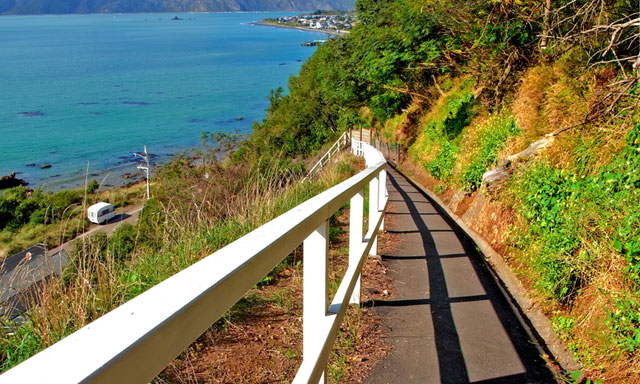 Picton Panorama and Karaka Walk