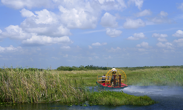 Central Florida Everglades by Airboat