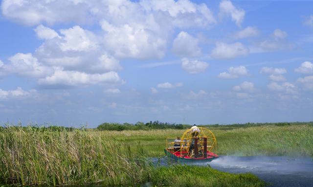 Florida Airboat Ride & Alligator Jungle