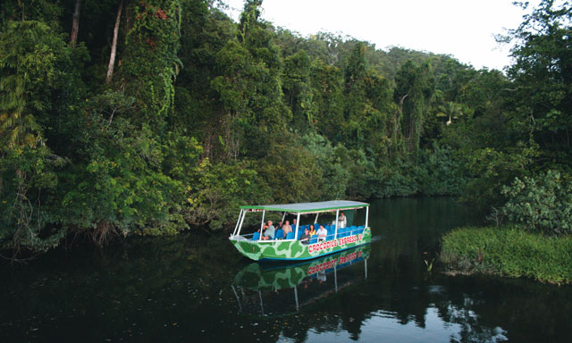 Daintree Rainforest and River Cruise