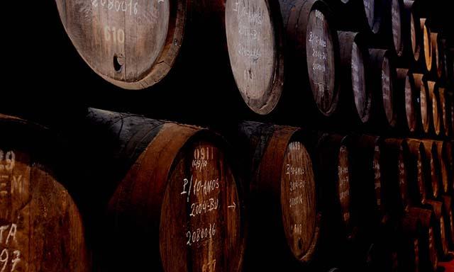 Splendors of Mateus Palace & Wine Tasting