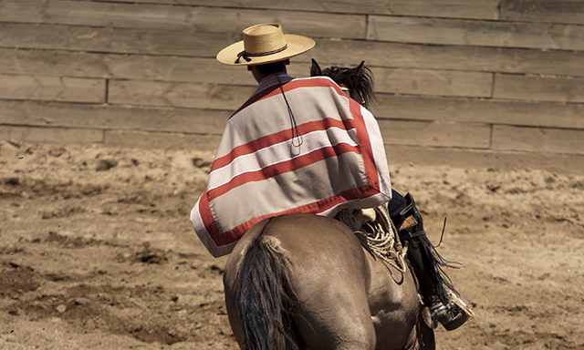 Chilean Rural Farm, Traditions, and Rodeo