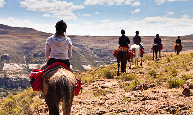 Horseback Ride Experience, Tequila and Lunch
