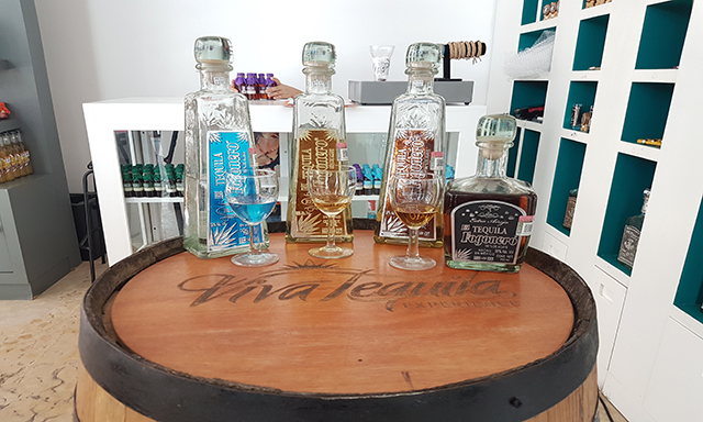 Viva Tequila Experience - Mexico With All Your Senses