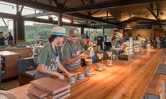 Costa Rican Coffee and Sarchi Shopping Tour