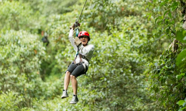 Original Canopy Tour - Mahogany Park