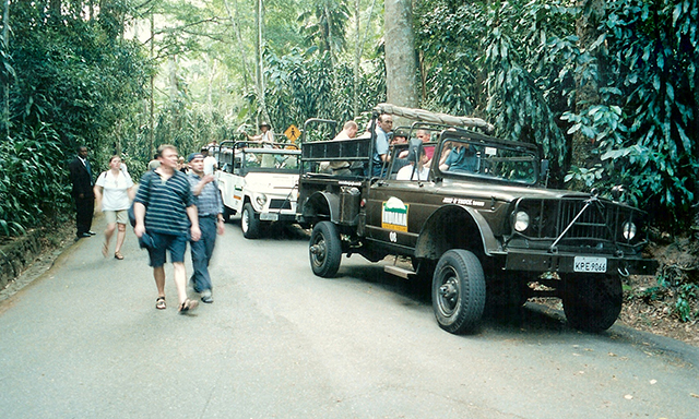 Tijuca Rainforest Jeep Tour