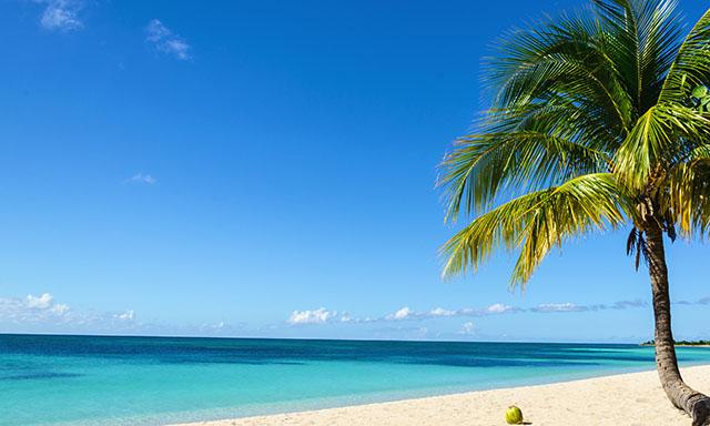 Beach Transfer