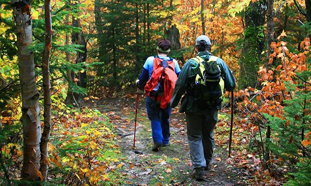 Stroll Saguenay National Park
