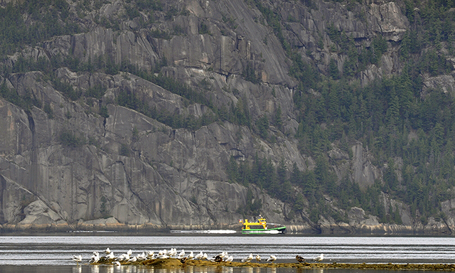 Zodiac Saguenay National Park