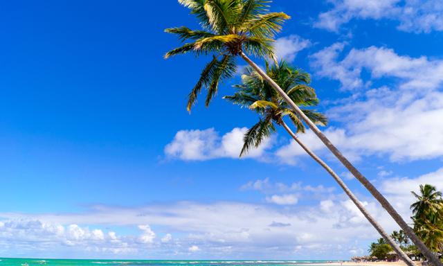 Cayo Levantado Beach Escape Plus
