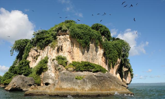 Cave, Mangrove Exploration and Beach Escape