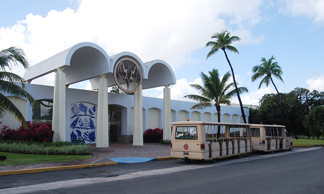 Bacardi Rum Distillery with Airport Drop-Off