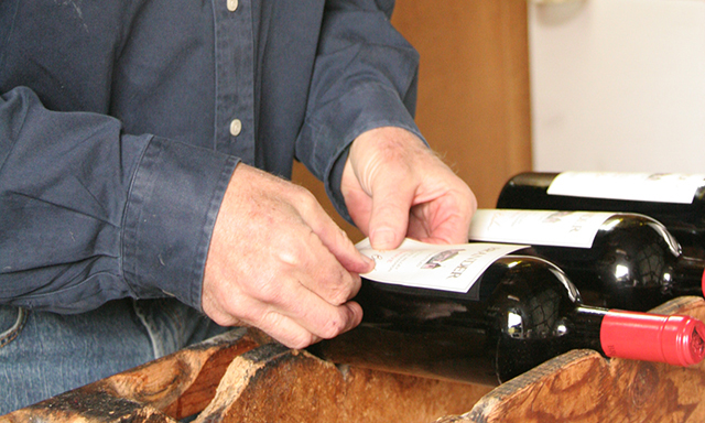 Wine Edventures - Two Winery Tour