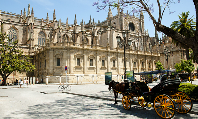 Seville Sights & Las Setas