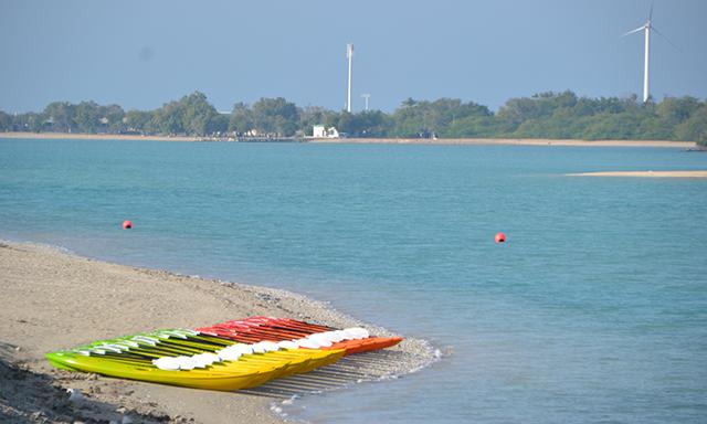 Kayak Mangrove Adventure - Single