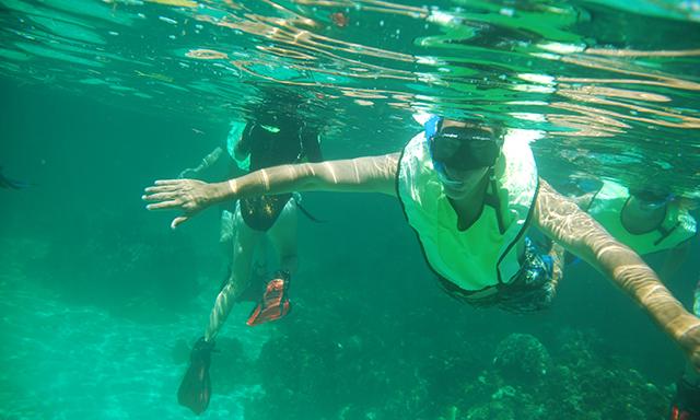 Buck Island Snorkeling & Beach
