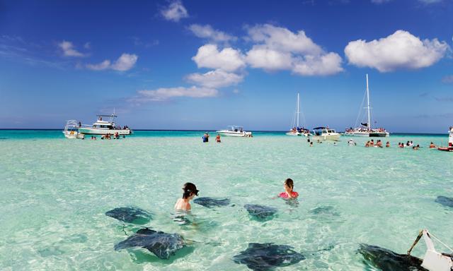 Stingray Swim & Snorkel