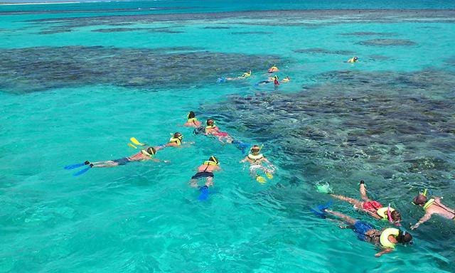 Kayak & Snorkel Eco Adventure