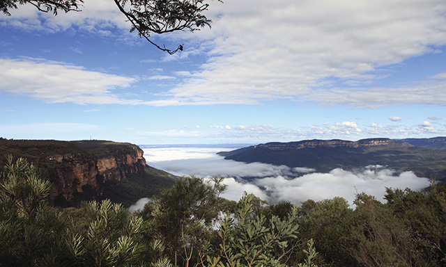 Discover the Blue Mountains and Scenic Railway