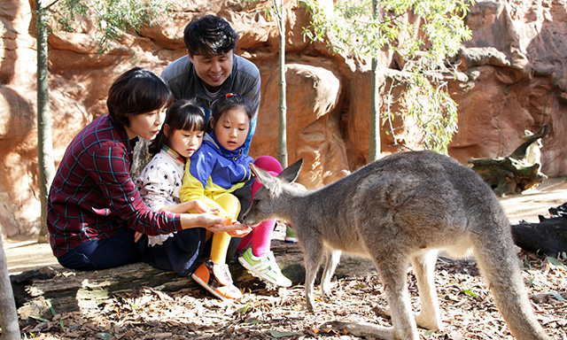 Wild Life Sydney Zoo - Pre Purchased Tickets