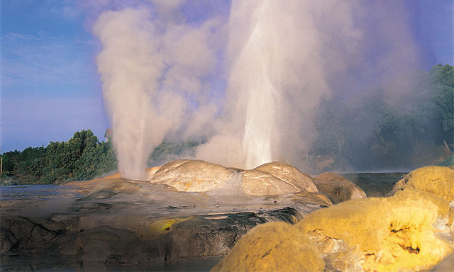 Blue Baths Tea and Rotorua Thermal Outing
