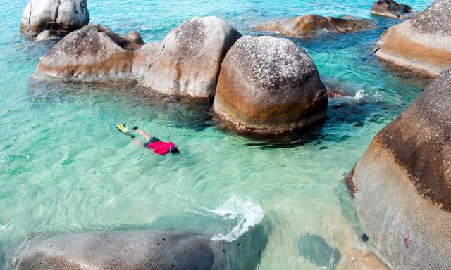 Half Day Snorkeling