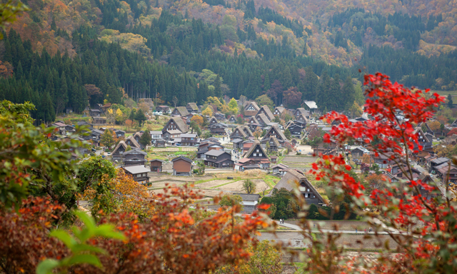 A Trip to Shirakawago World Heritage Village and Kanawaza