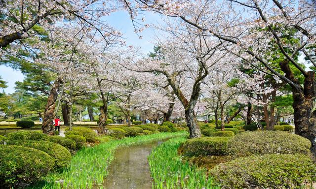 Toyama Half Day