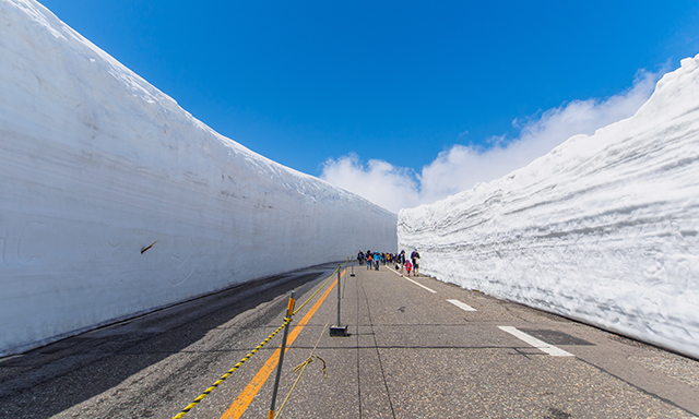 Tateyama Alpine Route and Toyama Full Day
