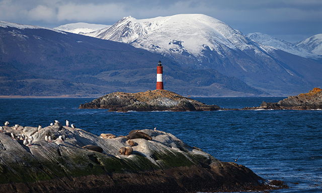 Beagle Channel Catamaran To Sea Wolves Island