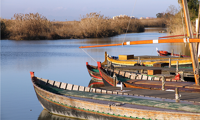 Albufera Natural Park: Biking, Boat and Picnic