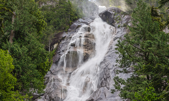 Sea to Sky Experience and Shannon Falls with Airport Transfer
