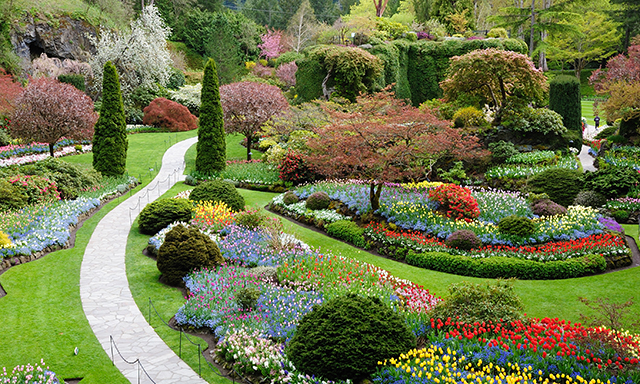 Butchart Gardens Picnic and Victoria Highlights