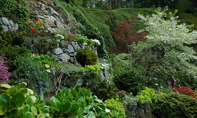 Enchanting Butchart Gardens