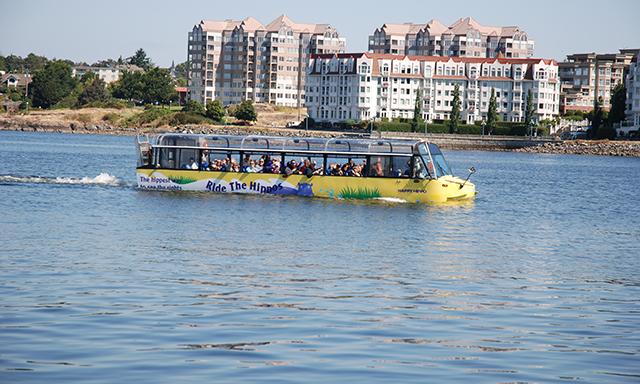 Victoria Amphibious Hippo Tour