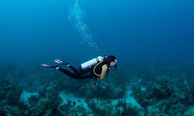 Certified Scuba Dive - Konanda Reef